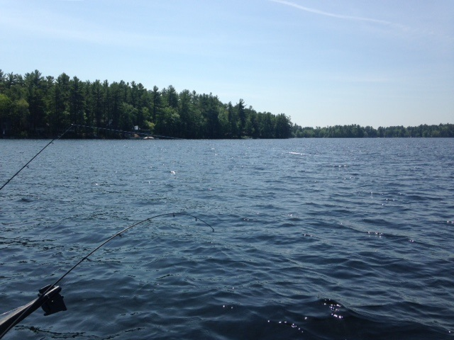 brown trout fishing on crystal lake gray maine may 30. Black Bedroom Furniture Sets. Home Design Ideas