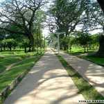 Ruwanweliseya