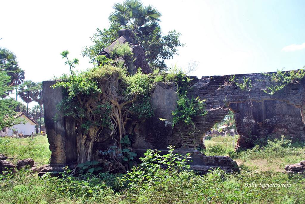 Remains of the Arippu Fort