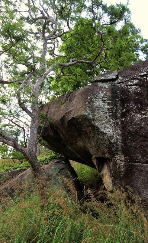 Beli Katu Lena - Prehistoric Kuragala