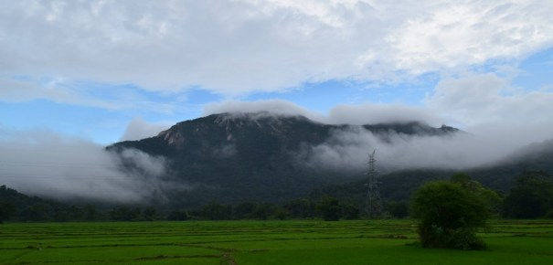 Ritigala Mountain Range covered with early morning cloudes