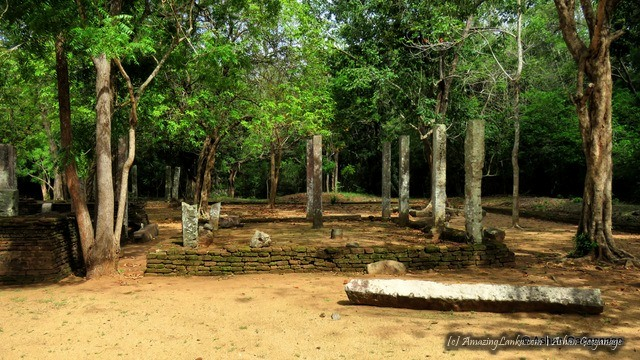 Ruins of the ancient aramic complex this complex of Padaviya Deiyanne Kanda Archaeological Site