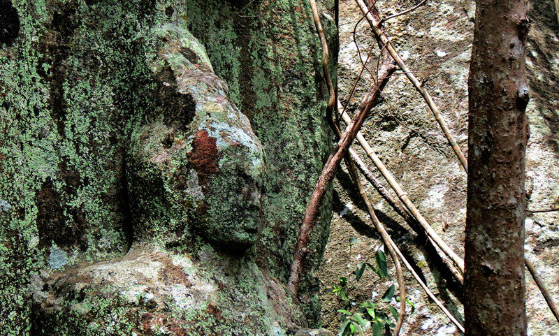 Wila Oya Budupatuna Ruins - Photo by Dr. Ashan Geeganage