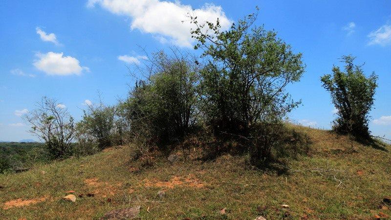 Ruins of a stupa at Bowattegala in Kumana
