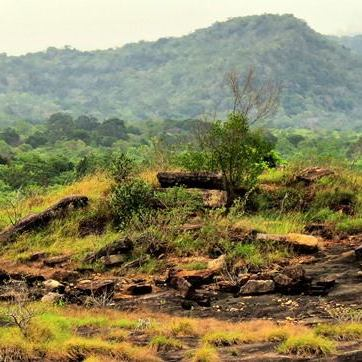 Ruins of the ancient civilization at the top of Kahata Aththa Hela in the Nilgala Forest