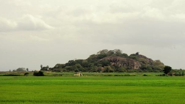 The rock formation ion which the Mullikulamali monastery at Adalachchenai is situated