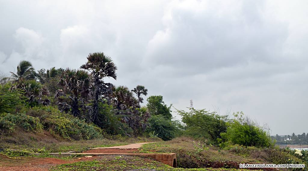 The foot path to the Gallows Tree in Hambanthota