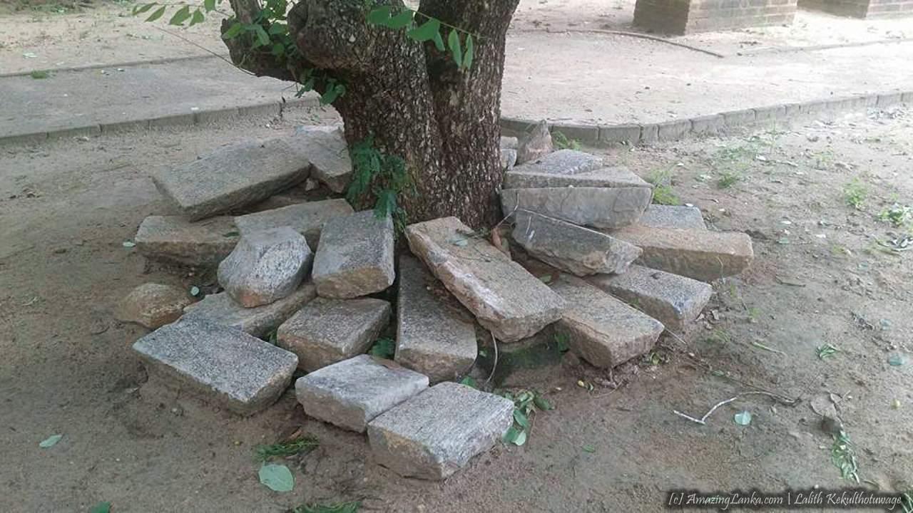 Ruins of Naigala Rajamaha Viharaya at Weeraketiya - වීරකැටිය නයිගල රජමහා විහාරයේ නටබුන්