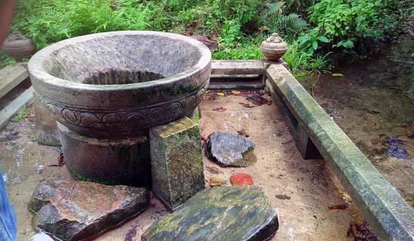 Gonamariyawa Ulpatha Freshwater Spring