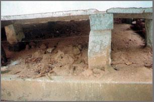 Muruddeniya Kandapita Purana Tampita Viharaya before restoration