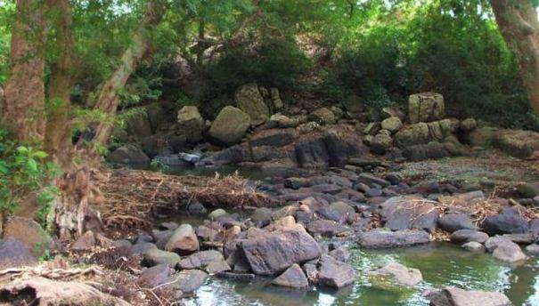 Ruins of Thimbiripokuna Palamgala Stone Bridge