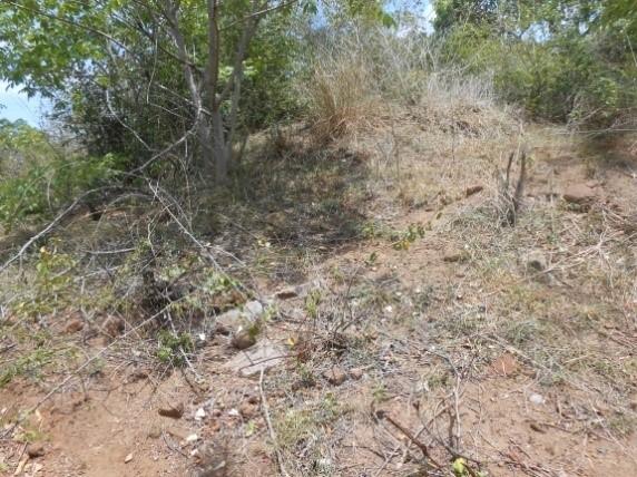 සෝමනුවර නීලපොල ගල්වල පුරාවිද්යා ස්ථානය - Somanuwara Neelapola Galwala Archaeology Site