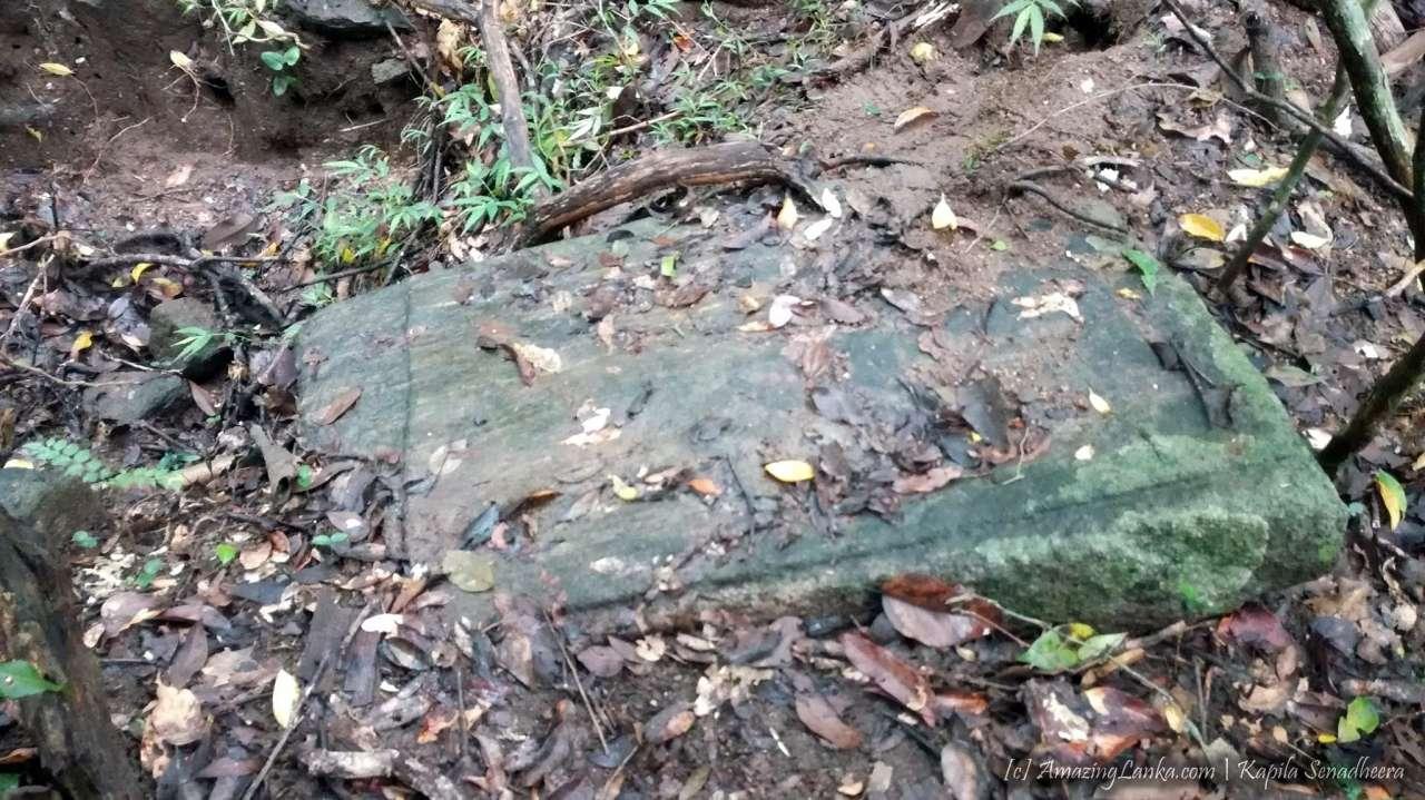 තලපත්කුලම වැව වනයේ සැඟවුණු නයි පෙණ හත සහිත නාග නාගනී ගල් කැටයම අසල පුරාණ ගොඩනැගිලි ශෛලමය නටබුන් අතර - Thalapathkulama Wewa Naga Nagini Rock Carving