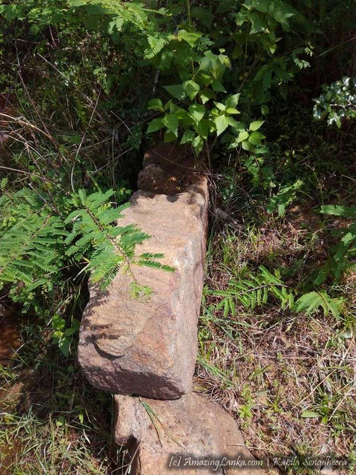 වනයේ සැඟවුණු තලපත්කුලම වැව නයි පෙණ හත සහිත නාග නාගනී ගල් කැටයම අසල පුරාණ ගොඩනැගිලි ශෛලමය නටබුන් අතර - Thalapathkulama Wewa Naga Nagini Rock Carving