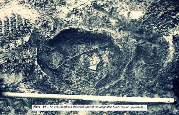 source : Early settlements in Jaffna : An Archaeological Survey