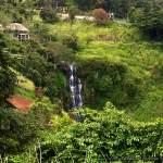 Beragala Chandani Ella Waterfall - බෙරගල චාන්දනී ඇල්ල