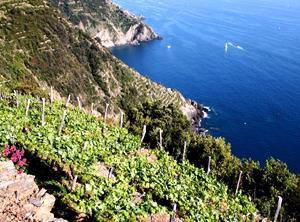 nationalpark-cinque-terre-italien