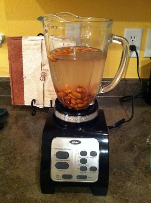 amazing-real-health-nut-milk