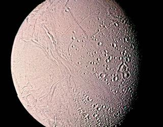 """Large molecules show Enceladus """"clearly is habitable for 