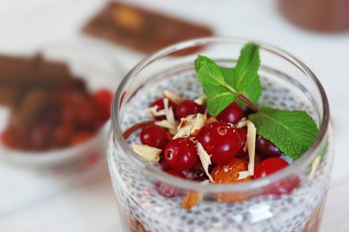 Chocolate chia seed pudding with cranberry and crushed almonds,