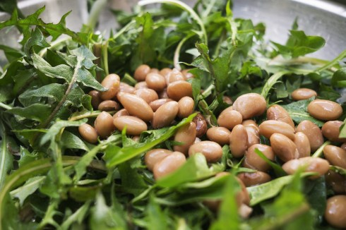 Fresh salad with dandelions and beans close up
