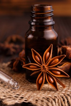 essential oil of the anis