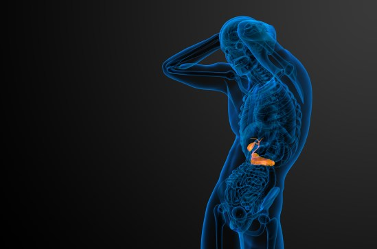 3D Render Medical Illustration Of The Gallblader And Pancrease