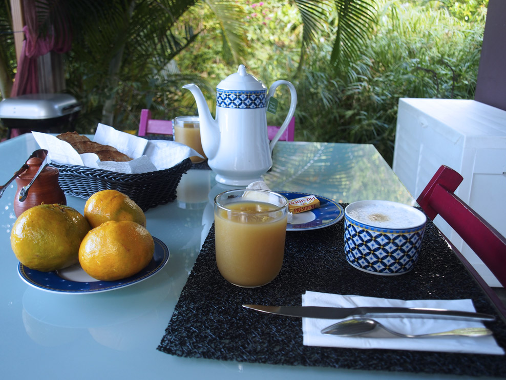 Toast, butter, Camembert, Brie. Guava juice. Oranges picked from the tree in her yard. Capuccino, hot tea.