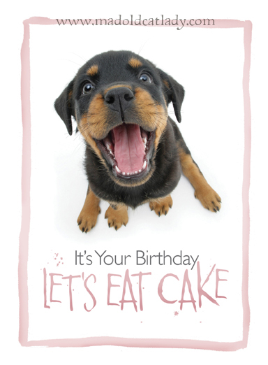 Mad Old Cat Lady Its Your Birthday Lets Eat Cake