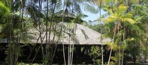 Prefeitura abre licitação para uso do Chapéu de Palha do Parque do Mindu