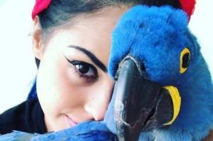 Tati Zaqui se envolve em polêmica por ter ave ameaçada de extinção