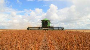 Em Rondônia, produção agrícola alcança quase 400 mil hectares; crescimento brasileiro pode chegar a 5,7%