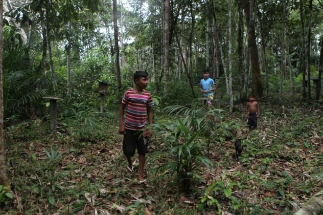Crianças caminham no roçado da aldeia Nova União (Foto: Danilo Mello/FotoAmazonas)