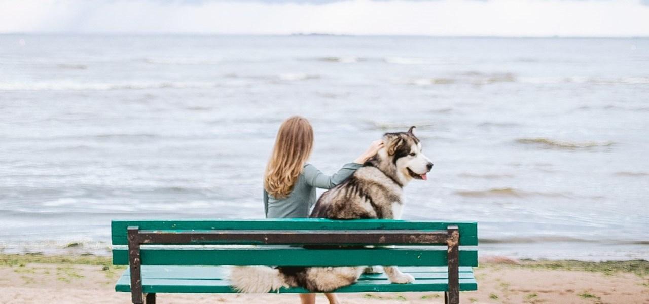 Nekoliko neupitnih životnih mudrosti: Ljudi su zajedno dok žele biti zajedno, Vrijeme nakon burne veze: Razdoblje velikog preispitivanja, Počnite svoju sreću stavljati na prvo mjesto