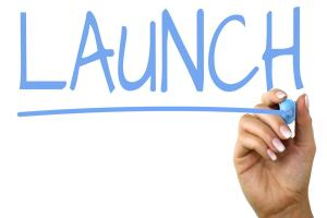 Launch The Business