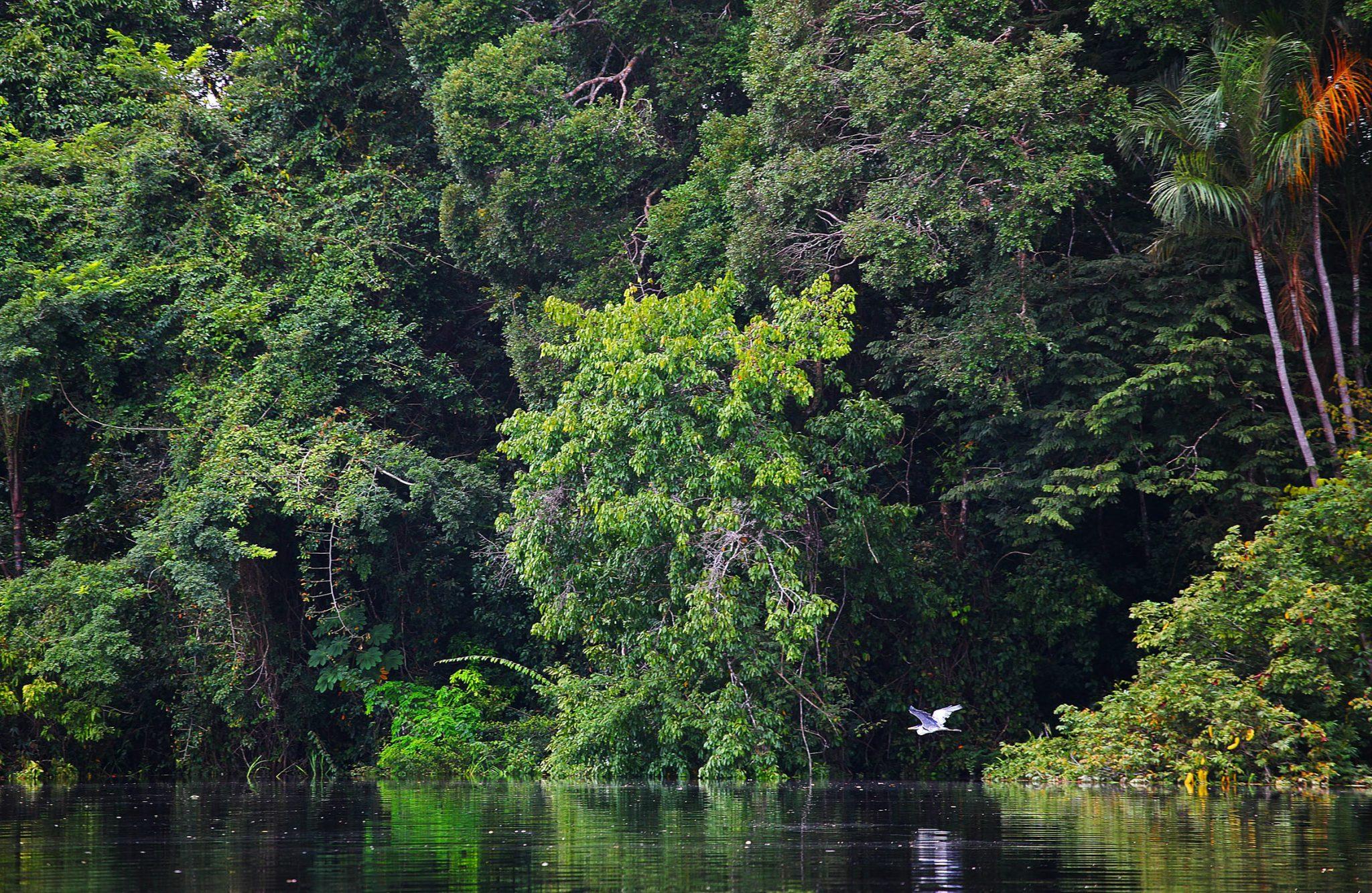 FormatFactoryAmazônia.-Foto-Ministério-do-Turismo.jpg