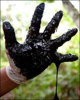 Victory for Ecuadorians! Chevron's Strategy Derails