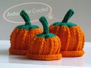 Little Pumpkin Hat Pattern Giveaway Ambassador Crochet
