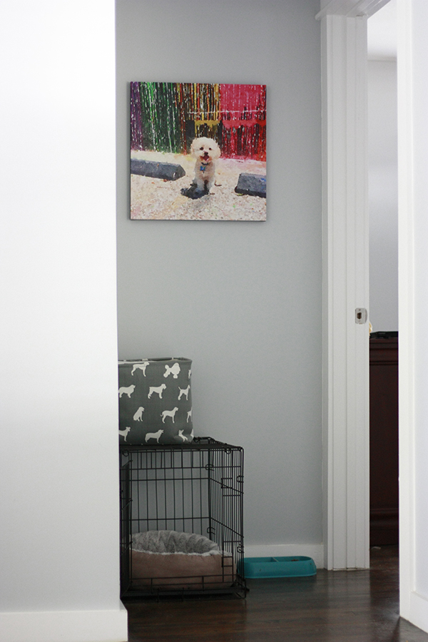 DIY Pet Portrait - make your own custom art with your favorite furry friend