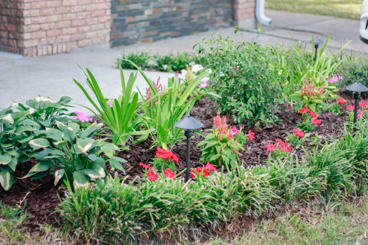curb-appeal-flower-bed-makeover-9