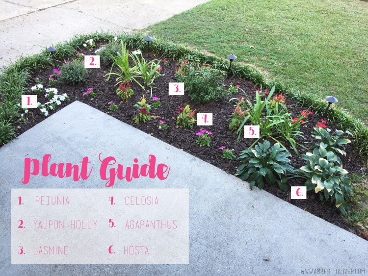 plant-guide-flowerbed-makeover