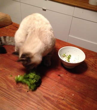 Sam loves Broccoli