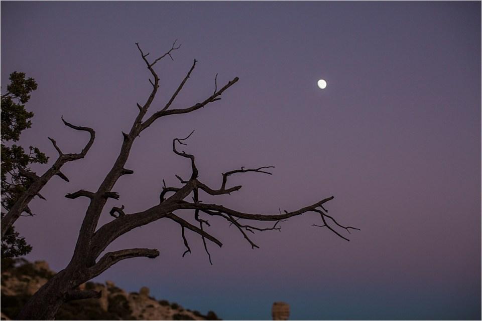 maternity_mount-lemmon_pregnant-mother_blue-dress_super-moon_sunset_03