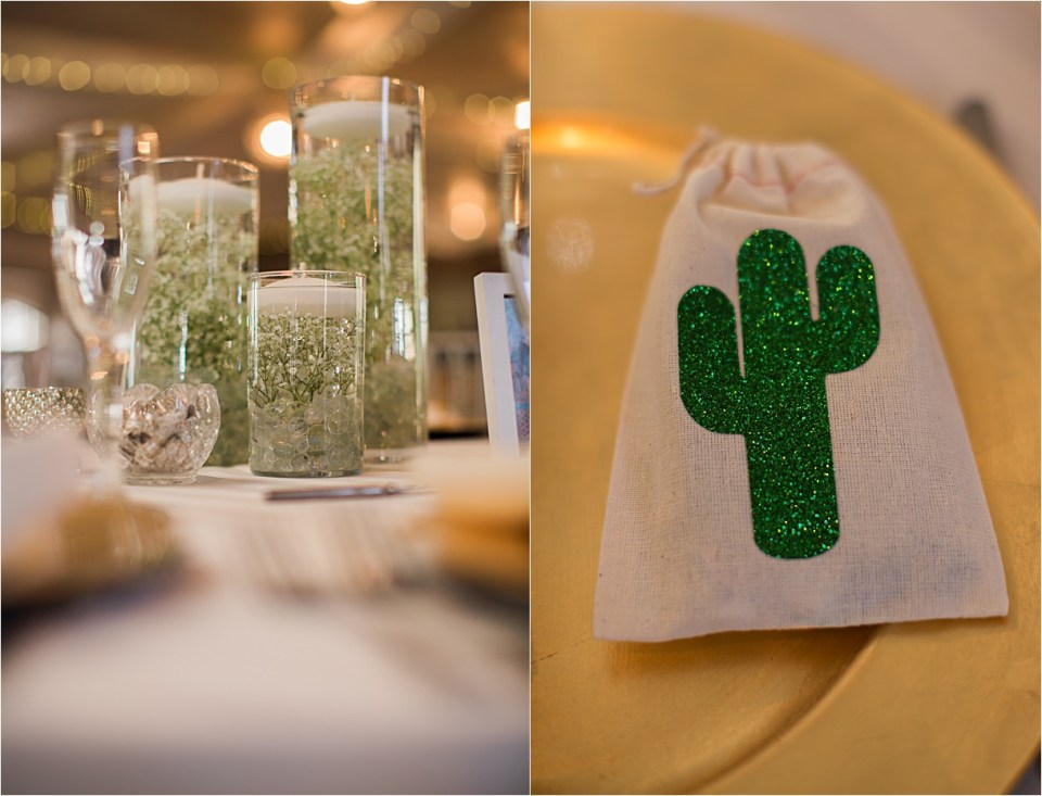 Saguaro Cactus party favor at Saguaro Buttes, Tucson, Arizona