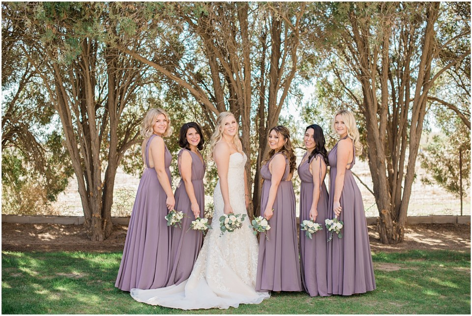 Tucson DIY Backyard Wedding Bridal Party Photos