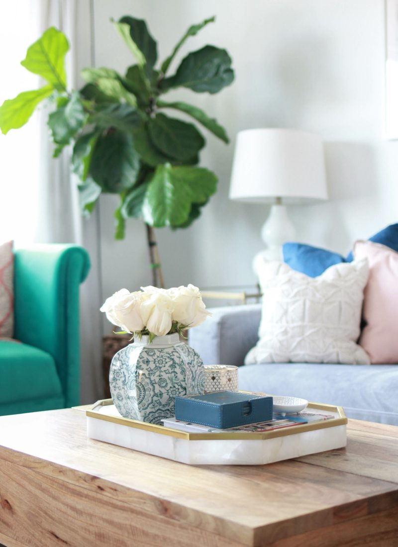 How To Care For Your Fiddle Leaf Fig Tree: Update
