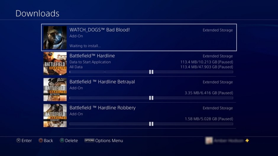 Screenshot of the PS4 download page
