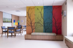 WHAT IS BIOPHILIC DESIGN + HOW CAN IT IMPROVE YOUR HEALTH?