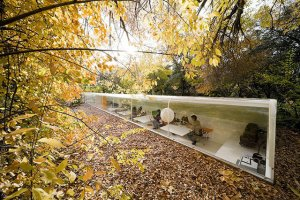 How Your Workplace Can Benefit From Biophilic Design