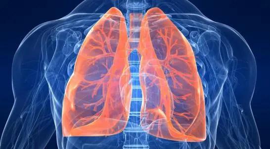 pulire i polmoni I cibi migliori per la salute dei polmoni